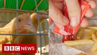 EUROPESE OMROEP | OPENN  | Pandemic supply chain disruption leaves US facing shortages of chicken, ketchup and wood - BBC News