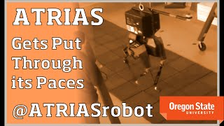 EUROPESE OMROEP | Dynamic Robotics Laboratory | ATRIAS Robot: Gets Put Through its Paces | 1429200394 2015-04-16T16:06:34+00:00
