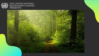 EUROPESE OMROEP OPENN Voices for Nature in Support of B