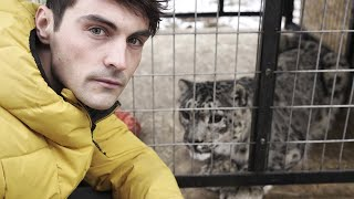 EUROPESE OMROEP | OPENN  | Snow Leopards: Ghosts in the Snow (Full Episode) | Part 4 | BBC Earth