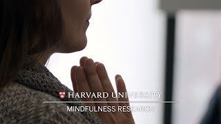 EUROPESE OMROEP | Harvard University | Mindfulness research probes depression benefits | 1523308351 2018-04-09T21:12:31+00:00