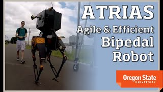 EUROPESE OMROEP | Dynamic Robotics Laboratory | ATRIAS: An Agile and Efficient Bipedal Robot | 1438030311 2015-07-27T20:51:51+00:00