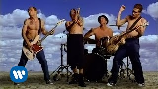EUROPESE OMROEP | OPENN  | Red Hot Chili Peppers - Californication [Official Music Video]