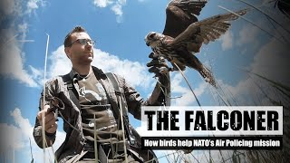 EUROPESE OMROEP | OPENN  | The falconer – how birds help NATO's Air Policing mission