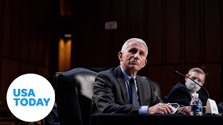 EUROPESE OMROEP | OPENN  | Senate Committee hearing on COVID-19 with Dr. Fauci (LIVE) | USA TODAY