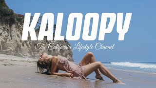 EUROPESE OMROEP | OPENN  | PSA: The Kaloopy Channel is Back - Go Watch 24/7 on DISTRO.TV Channel 96
