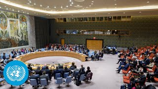 EUROPESE OMROEP | OPENN  | Upholding multilateralism and the UN-centered international system - Security Council meeting