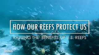 EUROPESE OMROEP OPENN How Our Reefs Protect Us: Valuing